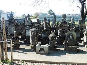 観昌寺 (5)
