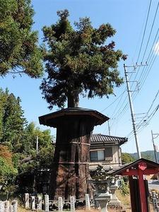 矢倉鳥頭神社 (11)