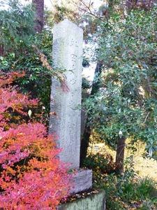 伝新田氏累代の墓 (2)