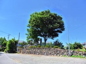 吉井藩陣屋跡 (1)