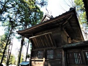 大宮神社 (4)