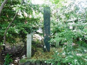 堀口飯玉神社 (5)