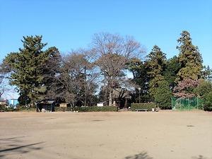 宿大類町熊野神社 (3)