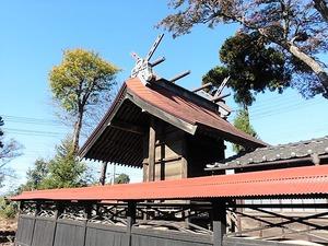 荻窪神社 (5)