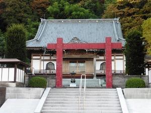 東吾妻町・善導寺 (2)