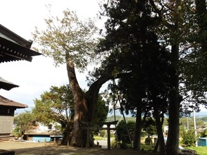 川田神社 (6)