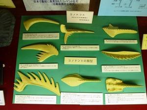 大間々博物館 (2)