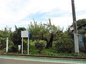 白川陣屋跡 (2)