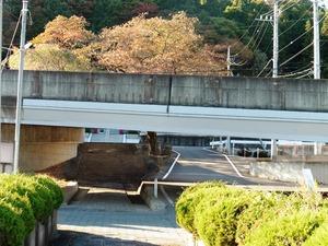 東吾妻町・善導寺 (6)