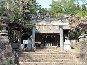 木曽三柱神社 (1)