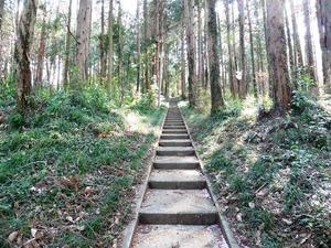 伏見神社 (3)