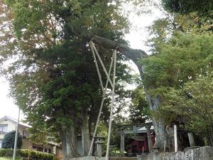 川田神社 (4)