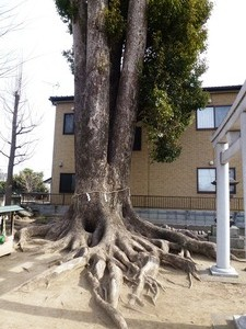 宮鍋神社 (6)