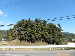 武内神社 (10)