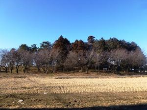お富士山古墳 (1)