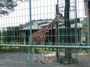桐生が丘動物園 (5)