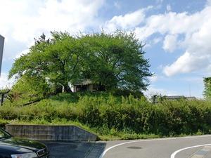 三島塚古墳 (3)