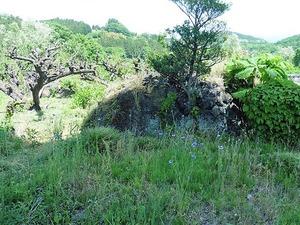 金島の浅間石 (2)