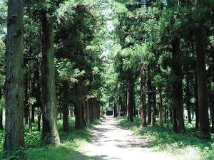 榎下神社 (2)