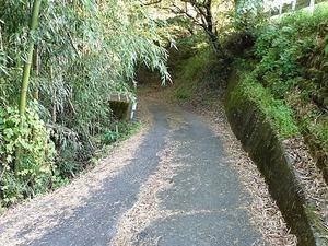 畔宇治神社 (9)