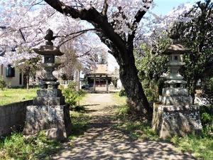 下八幡宮 (1)