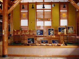 上野村森林科学館 (6)