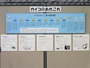 高山社情報館 (5)