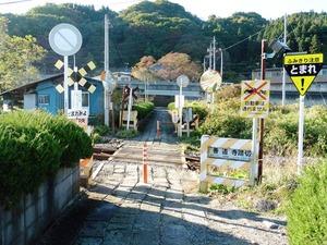 東吾妻町・善導寺 (5)