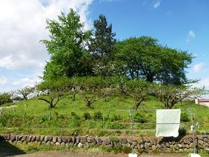 三島塚古墳 (2)