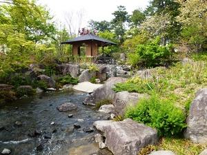 前橋公園・日本庭園 (6)