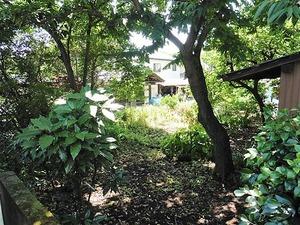 和田の館跡 (3)