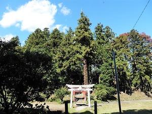 武内神社 (1)