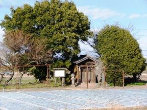 義国神社 (1)
