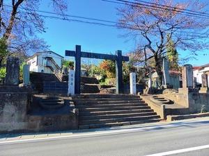 東吾妻町・善導寺 (1)