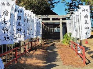 堀下飯玉神社 (3)