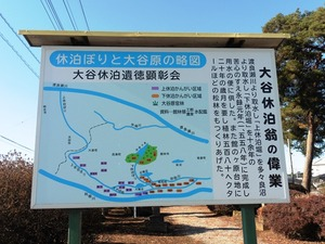 大谷休泊の墓 (3)