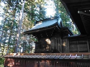 川戸神社 (5)