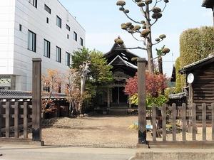 成田山不動堂 (1)