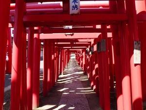 小泉神社 (4)