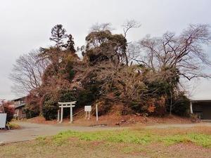 太田稲荷山古墳 (1)