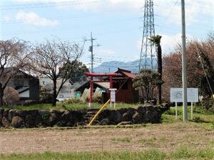 桃井城跡 (1)