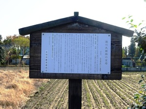 伝新田義重の墓 (2)