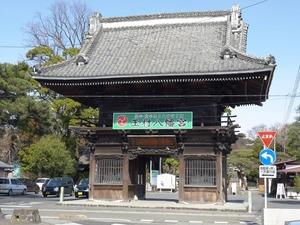 玉村八幡宮 (1)