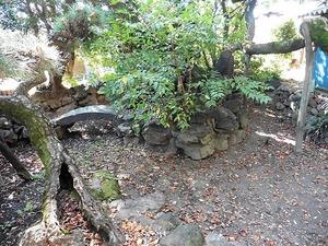 半田早尾神社 (4)