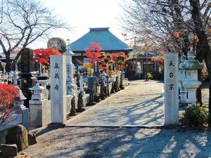 泉蔵寺 (1)