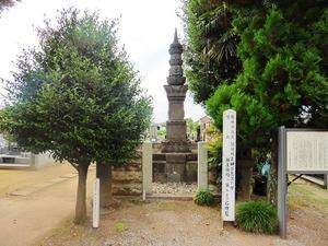 善長寺 (1)