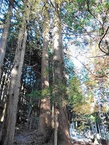 須賀尾諏訪神社 (7)