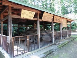 村主神社 (5)