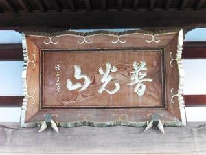 東吾妻町・善導寺 (4)