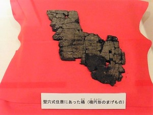 渋川市埋蔵文化財センター (10)